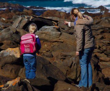 explore kangaroo island